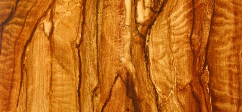 Peinture trompe l'œil de faux bois (olivier)