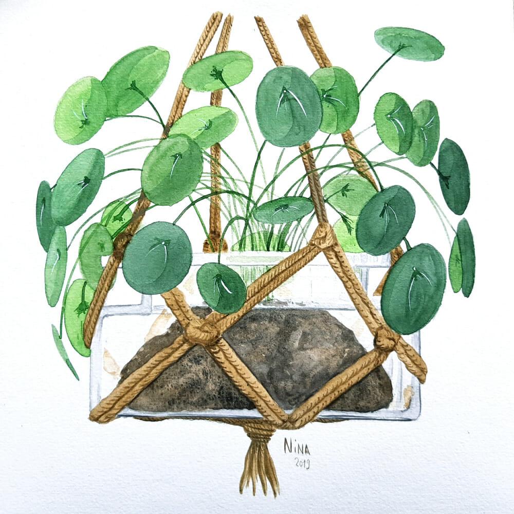 Plante suspendue en aquarelle
