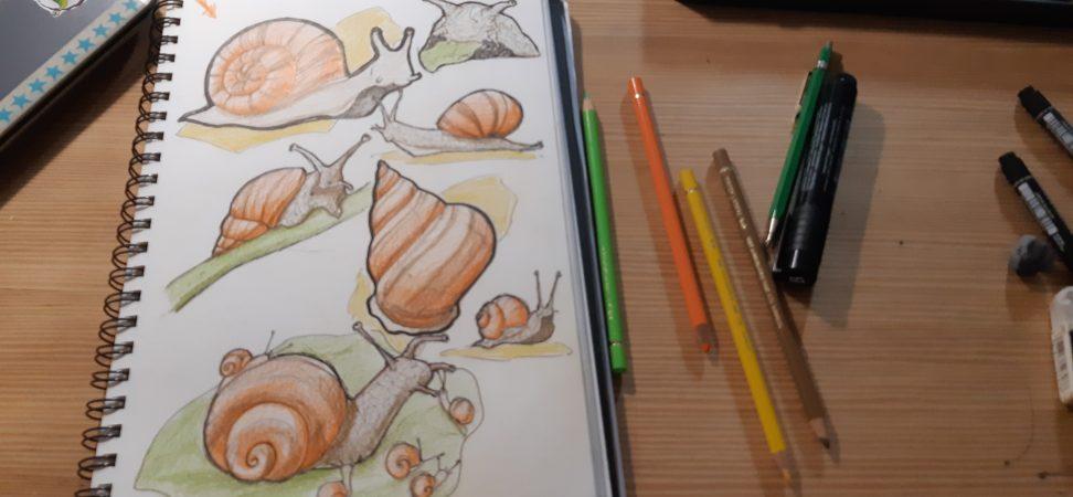 Carnet de dessin avec des escargots dessinés, crayons de couleurs et feutre sur table en bois