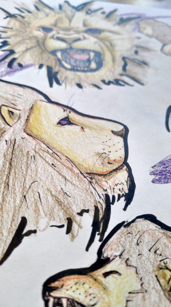 dessin de tête de lion de profil et de face